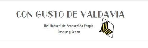 Con Gusto de Valdavia Miel Natural