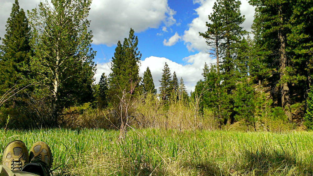 Camping at Davis Creek Regional Park and Hiking Ophir Creek Trail by Beth Hemmila