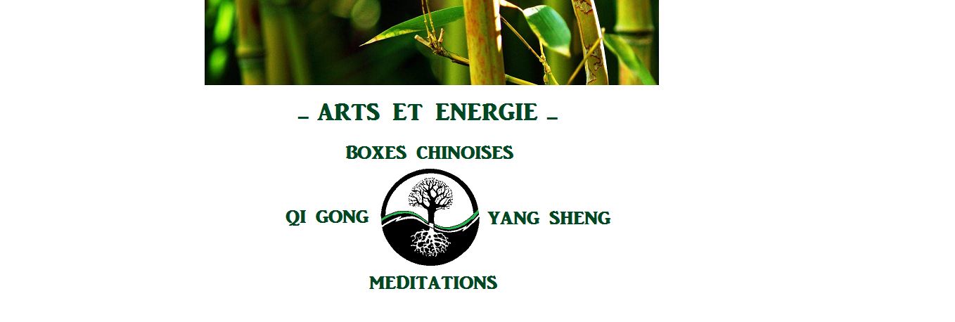 Arts et Energie Boxes Chinoises