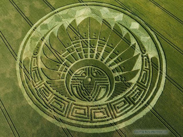 crop circle dengan pola rumit