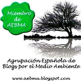 Los blogs miembros tienen este sello