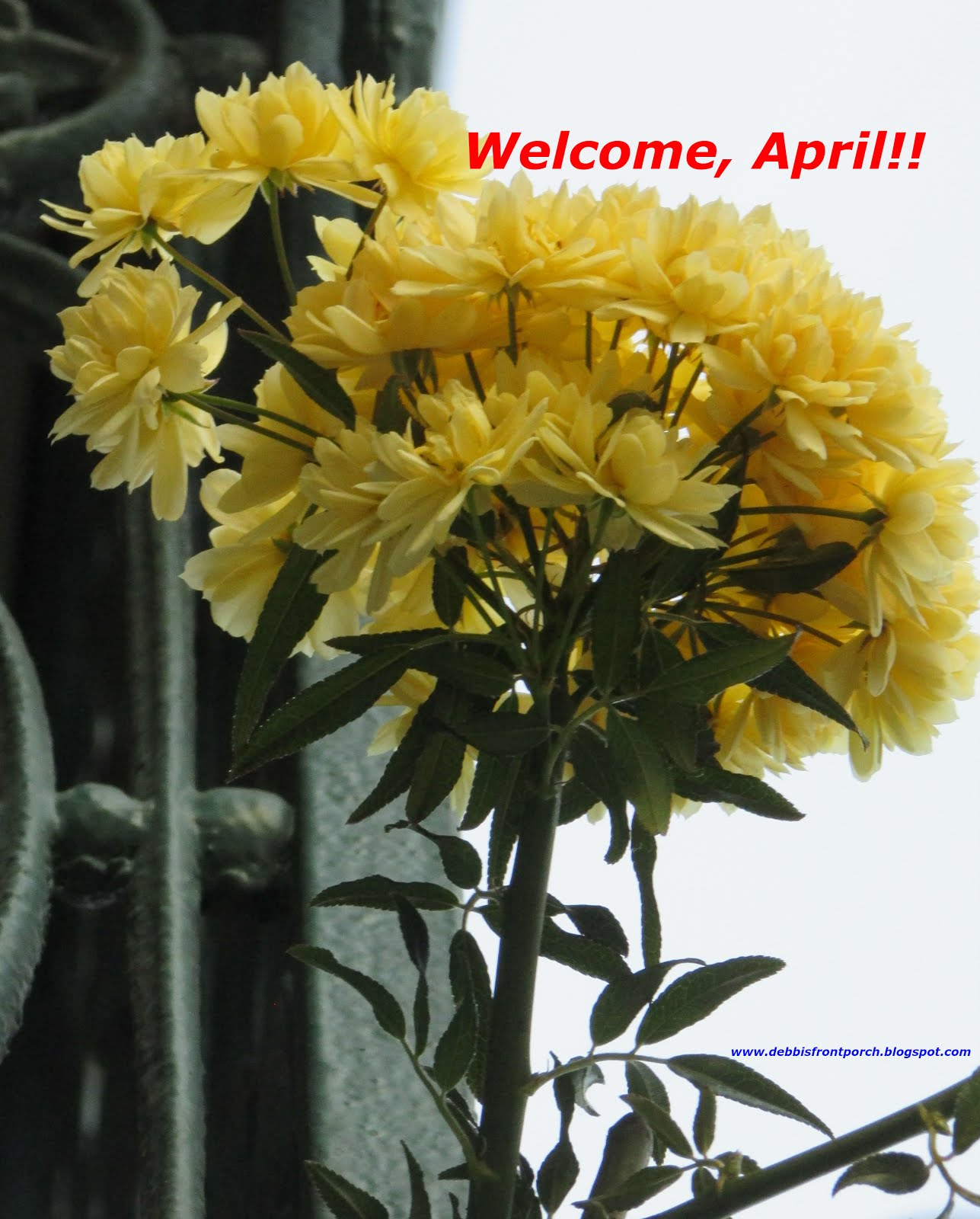 Finally...April's back!