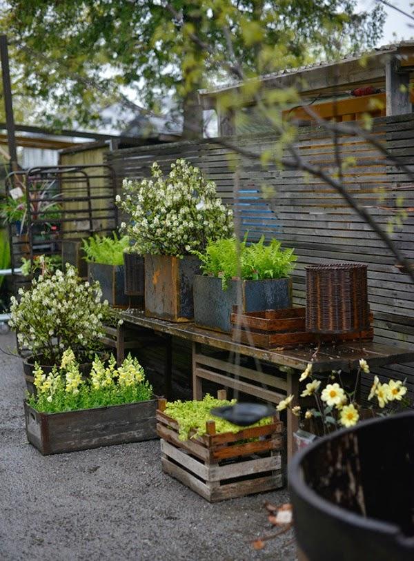 Estilo n rdico para el jard n un vivero en suecia guia for Vivero el jardin