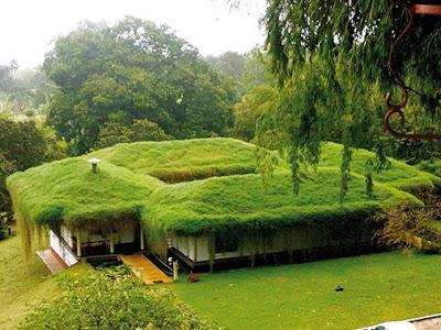 foto 9 increible jardin colgante en las montañas