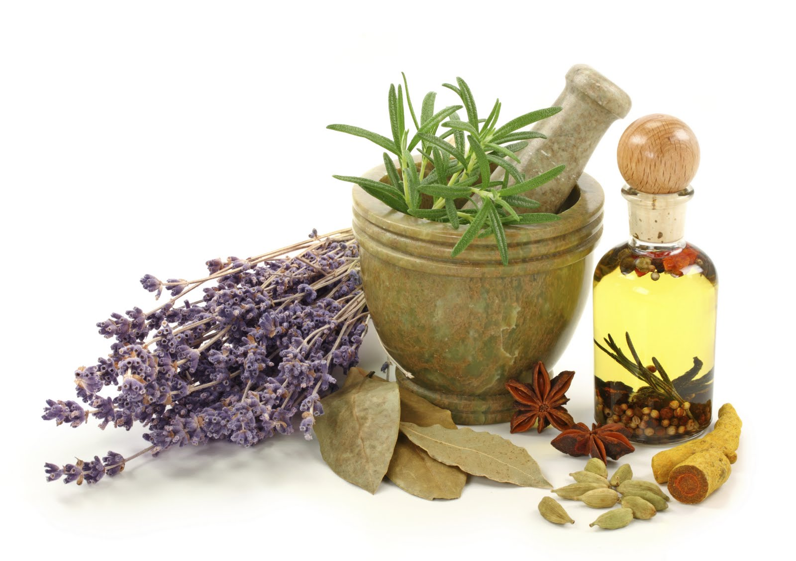 Natural Health Education: Homeopathy Courses ...