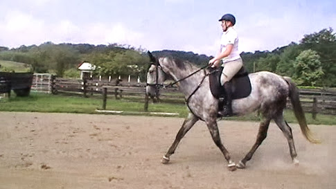 Brittany and Duke working on Dressage with Jeffrey Lord