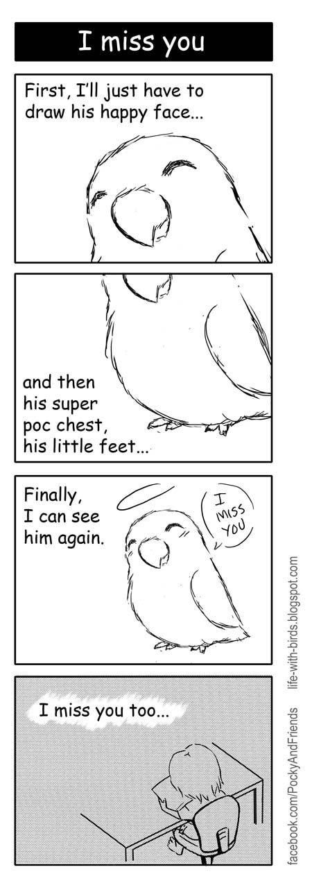 Bird webcomic about living with finches and lovebird parrots. Drawn in yonkoma manga comic strip style. It can be funny, sad or heart warming. Art by Emmil Thomas.