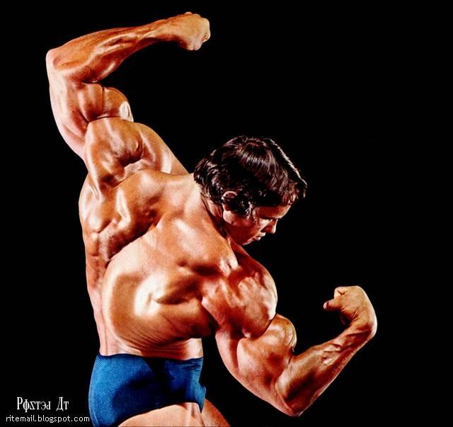 http://2.bp.blogspot.com/-8KkL9CkkAUI/Tprf_Qz3NzI/AAAAAAAAjxk/cbVqW-t35Mo/s1600/02+Arnold.jpg