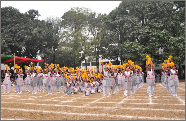 Essay on higher education in bangladesh