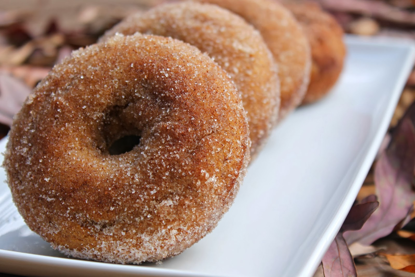 Carolina Charm: Apple Cider Donuts