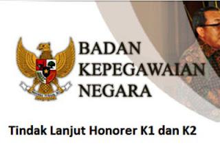 Tindak Lanjut Terkait Honorer Kategori 1 dan 2