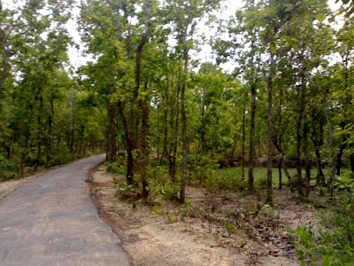 Bhawal National Park in Bnagladesh