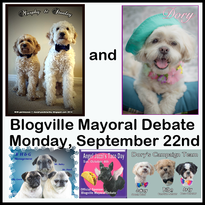 MAYORAL DEBATE 9/22/14