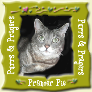 Prancer Pie