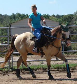 artist Jen Pratt, PSSM horse, equine art