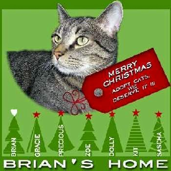 Merry Christmas, Brian's Home