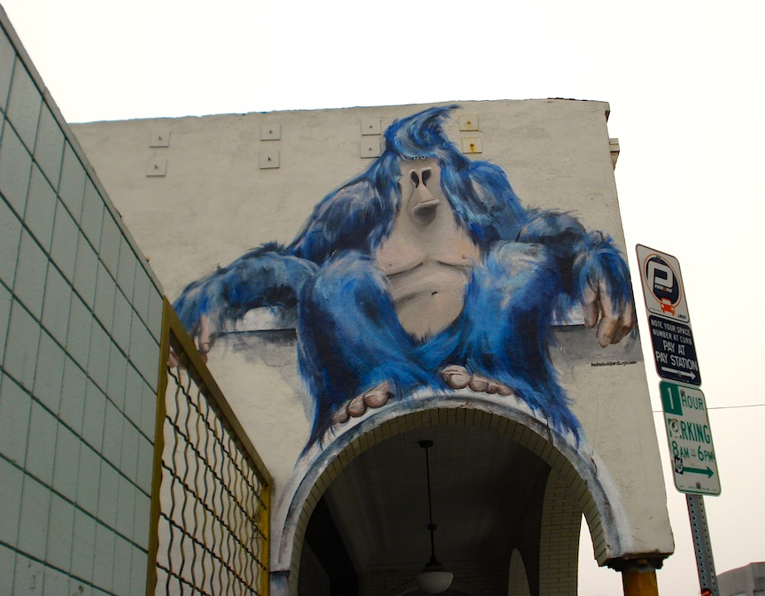 Blue gorilla - photo#17