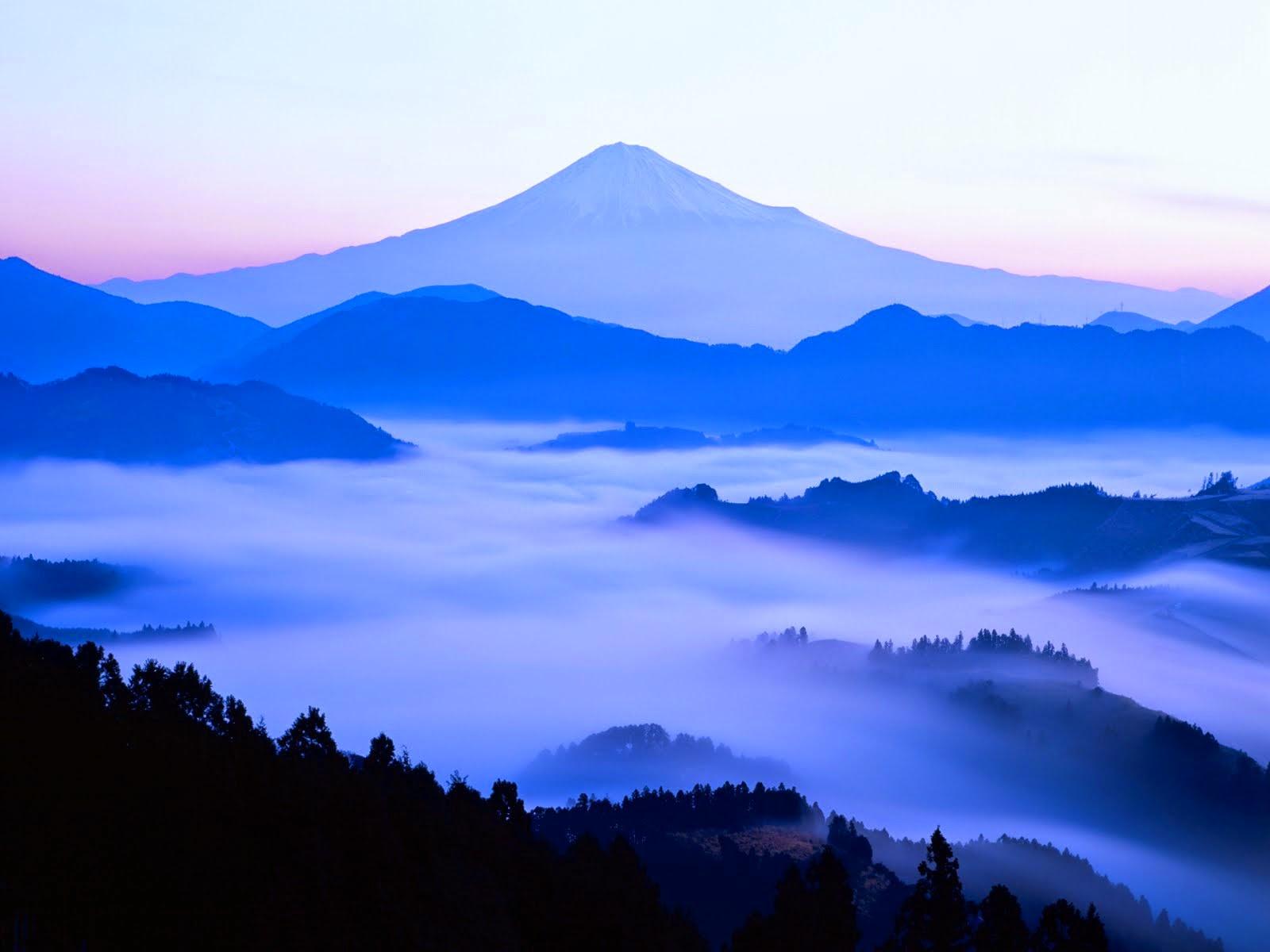M.Fuji