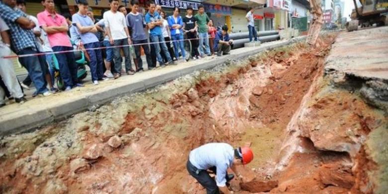 Pekerja Jalan Di China Temukan 43 Telur Dinosaurus