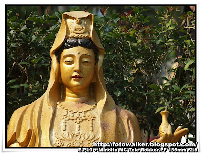 萬佛寺 (Ten Thousand Buddhas Monastery)