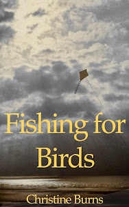 Buy 'Fishing for Birds'
