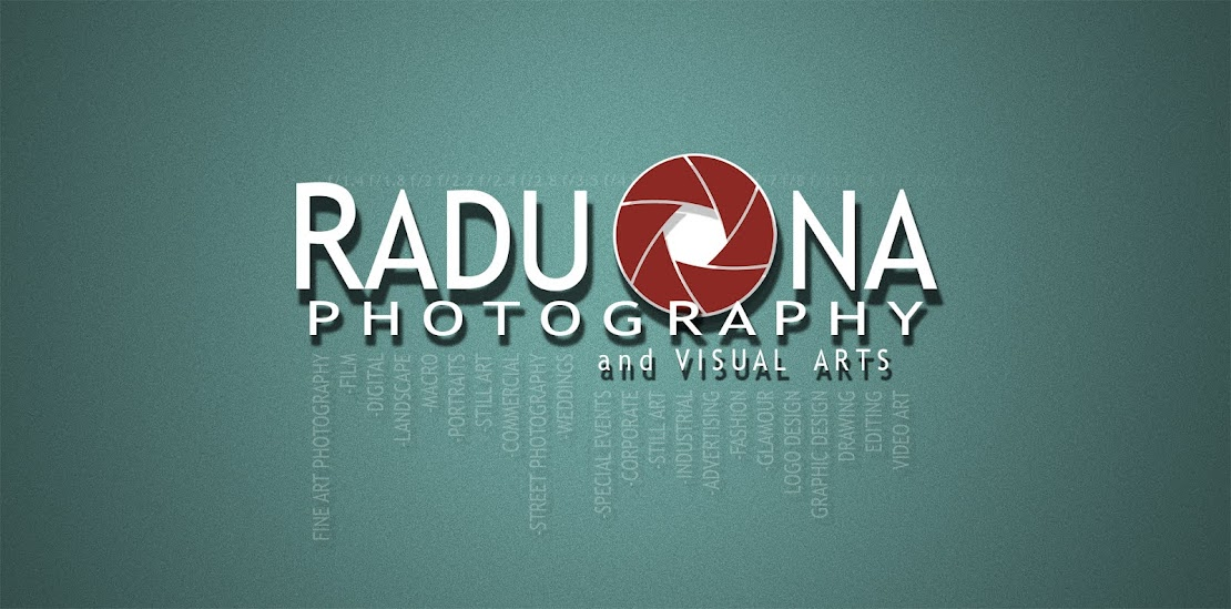Radu Ona - Photography and Visual Arts