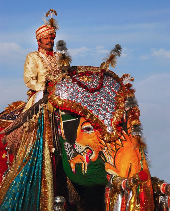 karnaval gajah