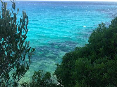 Hotel Playa Canyamel Mallorca