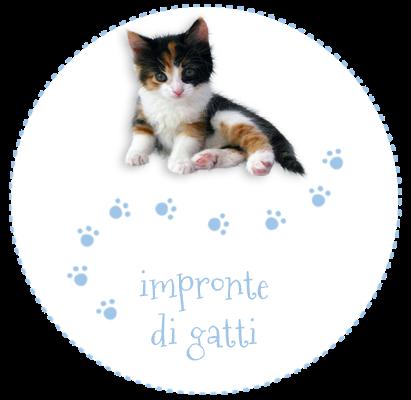 impronte di gatti