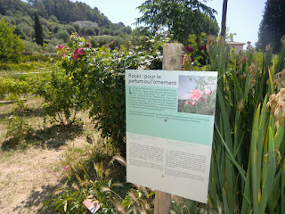 Information along MIP gardens olfactory route