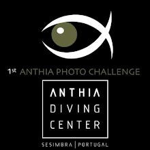 1º ANTHIA PHOTO CHALLENGE
