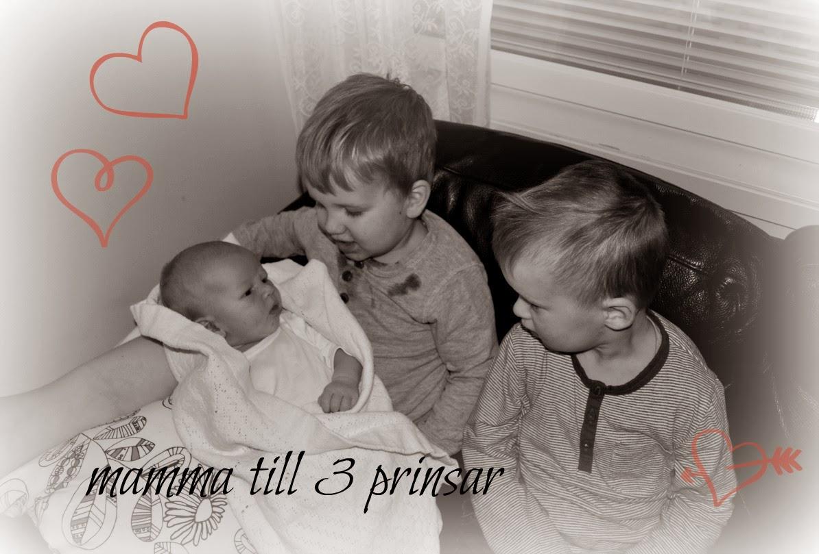 Mamma till 3 prinsar