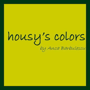 "cine-i ""housy's colors"""