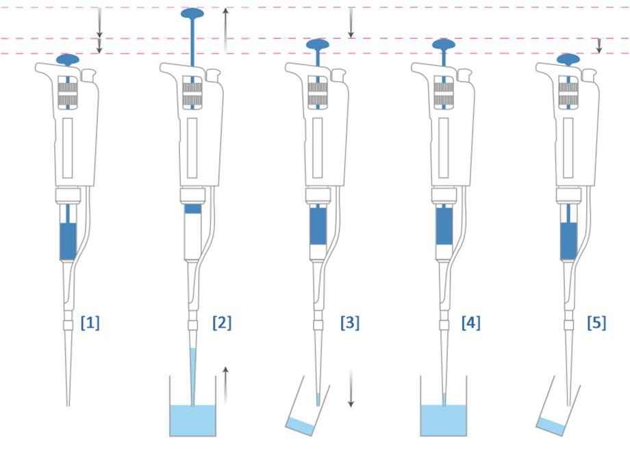 Cara menggunakan mikropipet