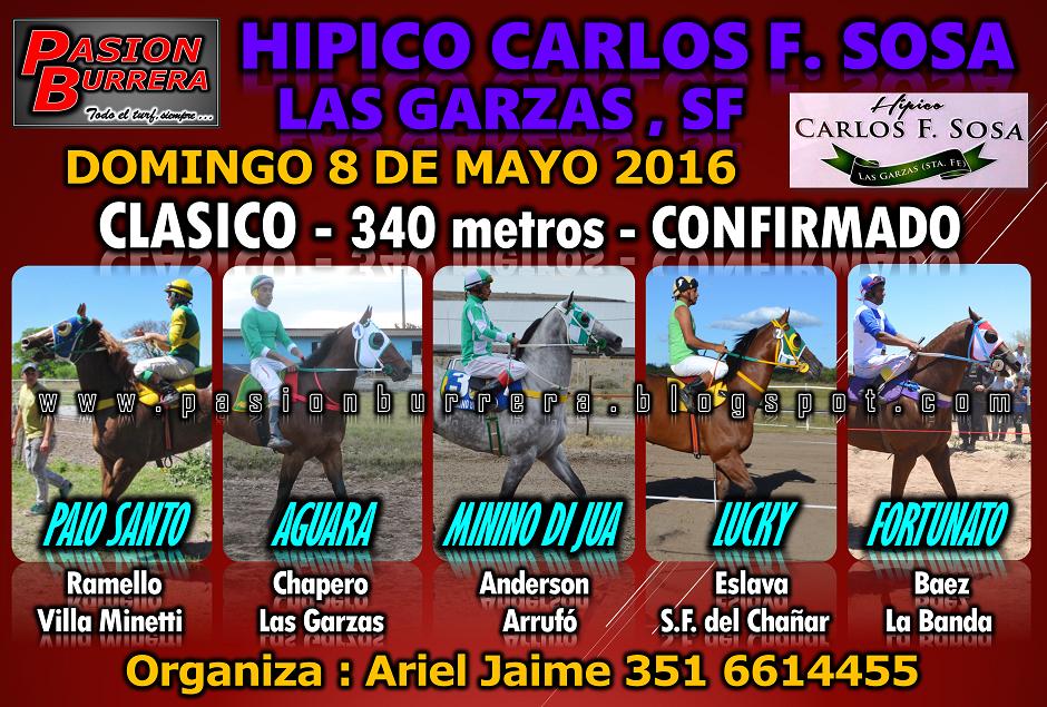LAS GARZAS - 8 - 340 - 5