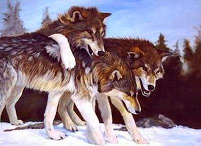 cuadros-realistas-con-animales
