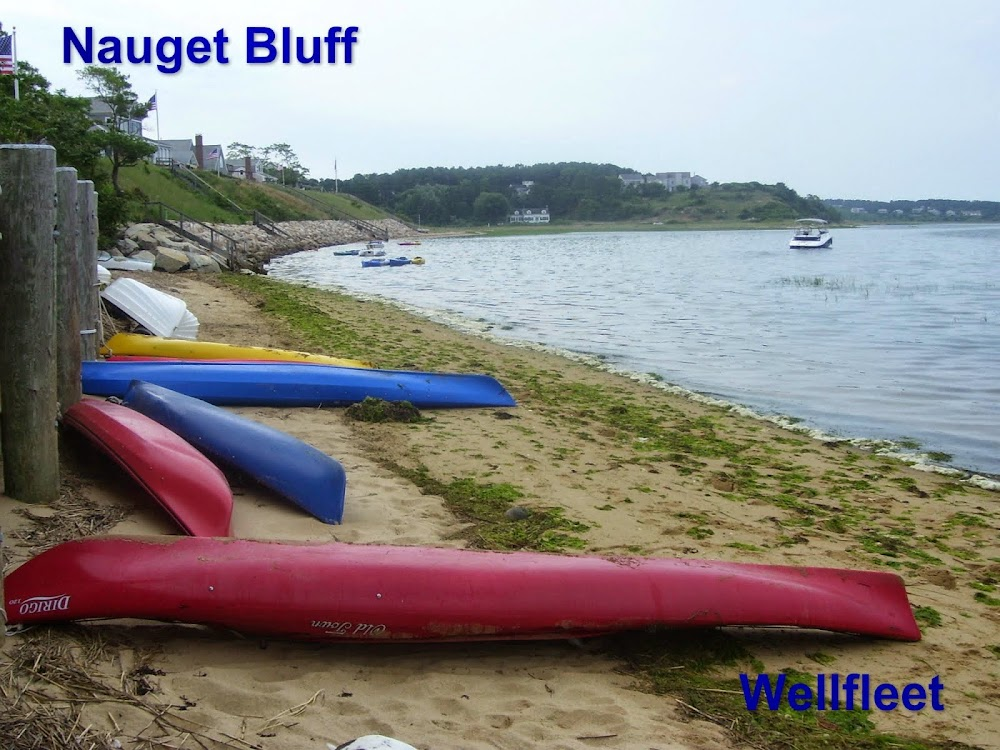 Nauget Bluff