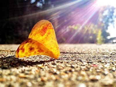 Kata Kata Mutiara Cinta Pagi Hari buat Pacar