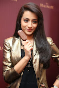 Trisha Krishnan Photos Gallery-thumbnail-3
