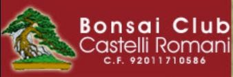 http://www.bonsaicastelliromani.it/index.php