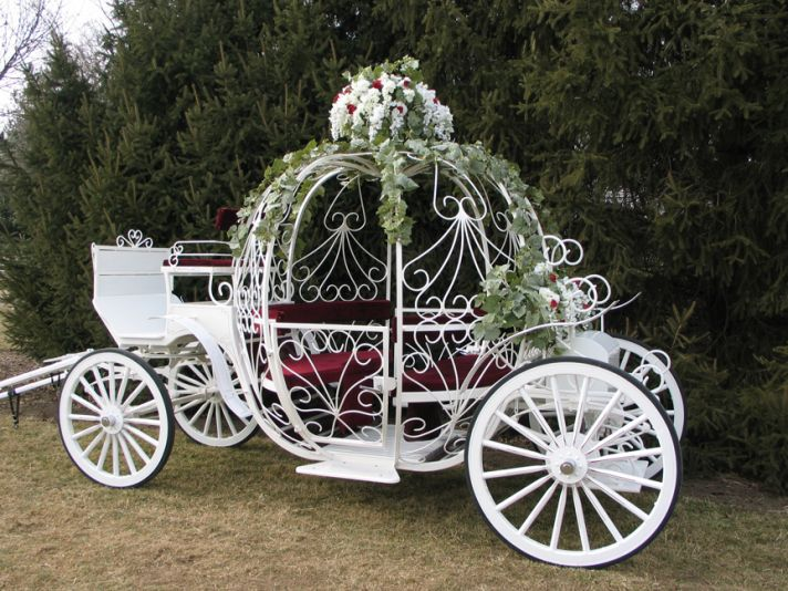 Honey buy guide to wedding cars for Car carriage