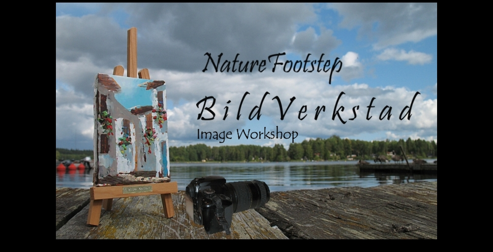 NF  BildVerkstad - Workshop