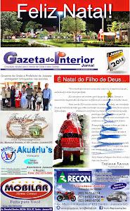 VEJA A EDIÇÃO Nº 55 DO JORNAL GAZETA DO INTERIOR
