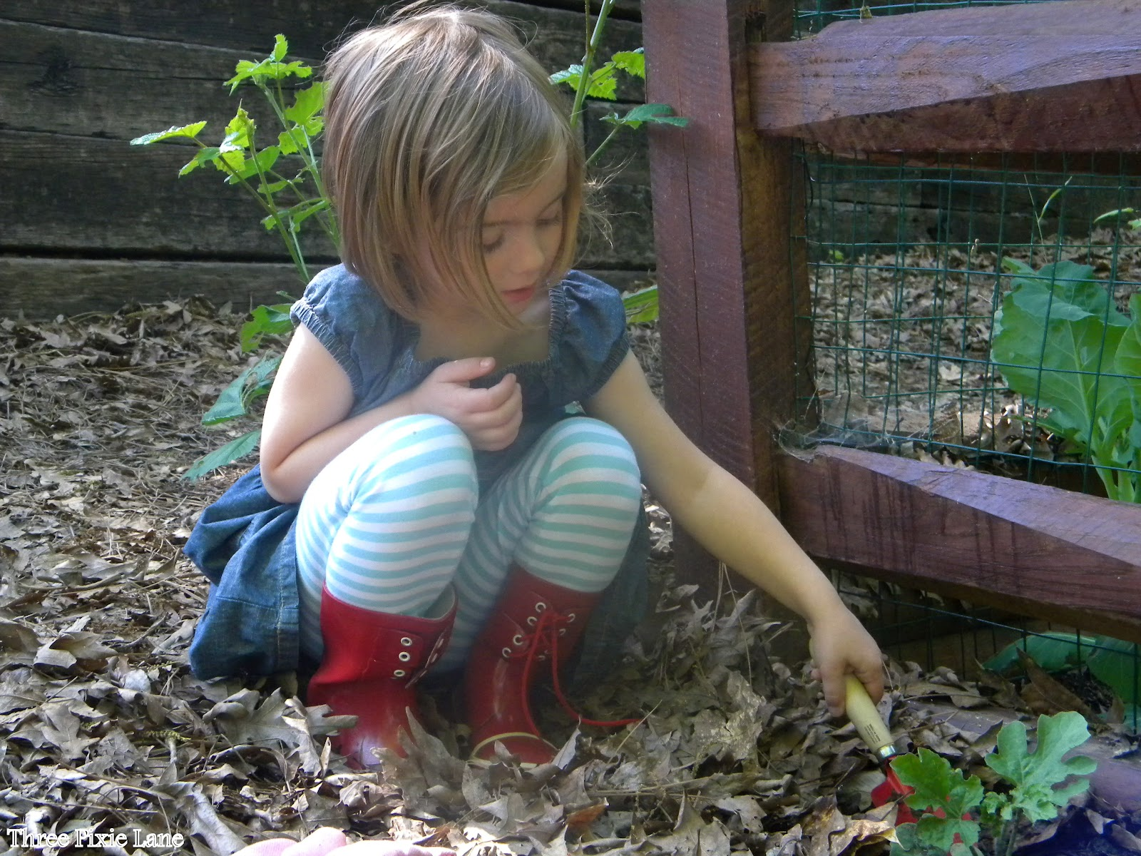 three pixie lane summer fun for older kids self sufficiency and