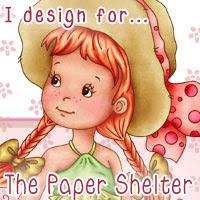 paper shelter dt