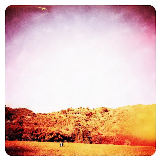 Buscando a John Wayne en un Camino de Azahares 2012