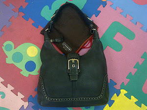 Coach Soho Leather Lynn Hobo Handbag(SOLD)