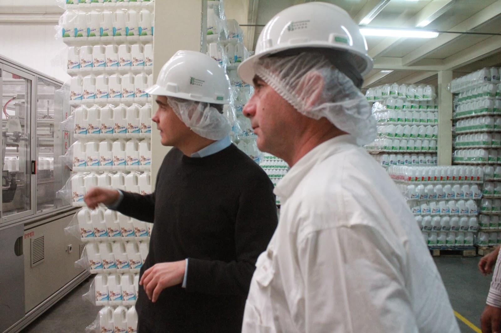 fabrica de leche pasteurizacion: