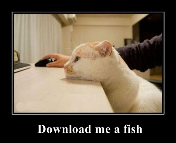 Download Me A Fish (Cat)