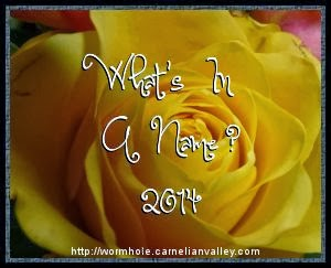 What's in a Name 2014